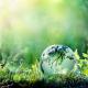 CRM Synergies comprometida con el entorno